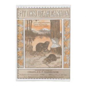 My Own Dear Canada Tyvek® Card Case Wallet